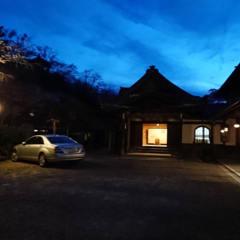 夜桜とおぼろ月夜の画像